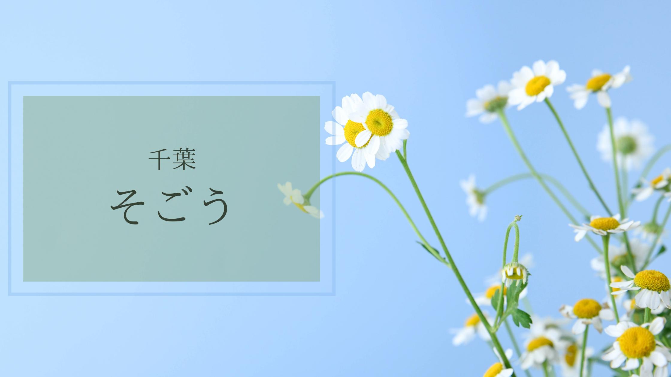 千葉そごう ATELIER CHIHIRO イベント