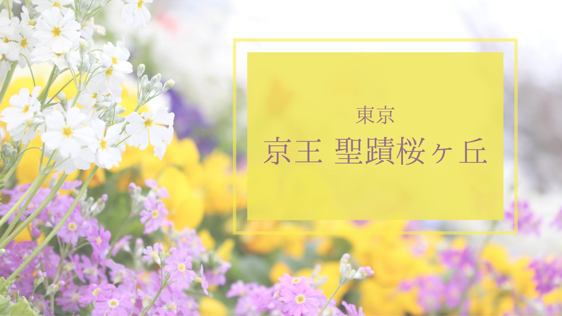 リバティプリント ポーチ 京王聖蹟桜ヶ丘 ハンドメイド
